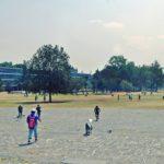 UNAM-CDMX